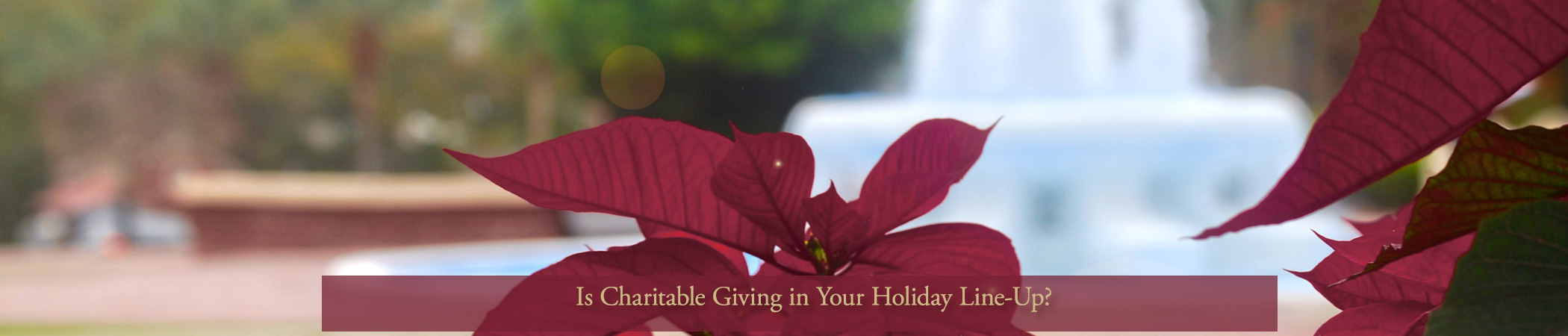 Is Charitable Giving in Your Holiday Line-up?