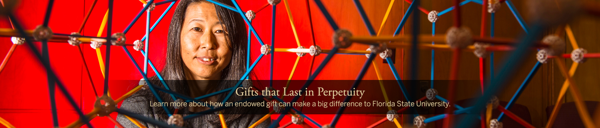 Gifts that Last in Perpetuity - Learn more about how an endowed gift can make a big difference to Florida State University.