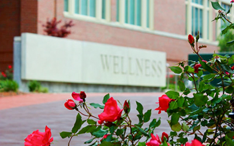 Photo os roses and wellness sign