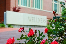 Photo of roses and wellness sign